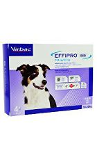 Effipro DUO Dog M (10-20kg) 134/40 mg, 4x1,34ml