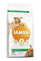Iams Dog Adult Large Lamb 3kg