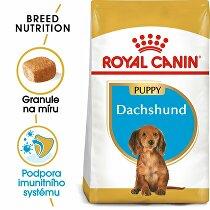 Royal canin Breed Jezevčík Junior 1,5kg